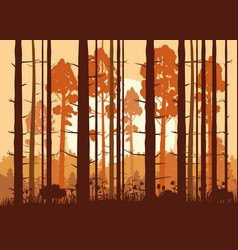 forest sunset mountains silhouettes of pine vector image