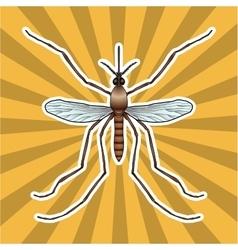 Insect anatomy Sticker realistic mosquito Culex vector