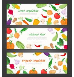 natural food - set of modern colorful vector image