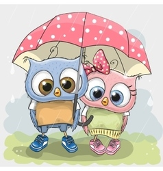 Two cute Lovers Owls vector image