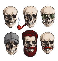 human skull bones with sunglasses beard vector image