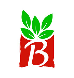 Abstract square leaf initial b vector