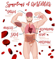 Anemia symptoms poster vector