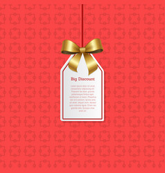 big discount hanging on knit label with tag place vector image