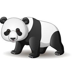 cartoon panda isolated on white background vector image