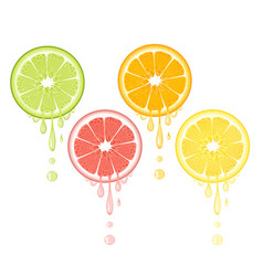 Citrus drops juicy lemon grapefruit lime orange vector
