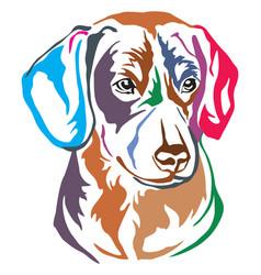 colorful decorative portrait of entlebucher vector image