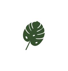 monstera leaf logo vector image