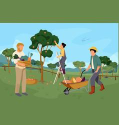 organic farm garden composition vector image