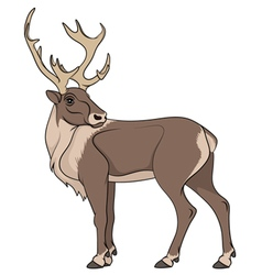 Deer isolated object vector image