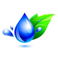 Water drop and leaf vector
