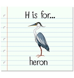 Flashcard letter H is for heron vector