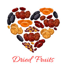 Heart of dried fruits snacks vector