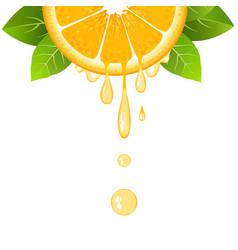 Orange slice with juice drops juicy citrus fruit vector