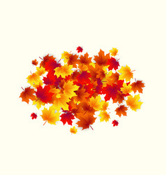 autumn circle round vector image