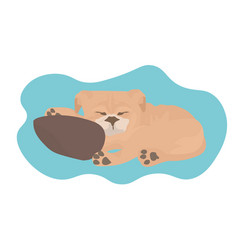 cute dog sleeping home pet relaxing on floor vector image