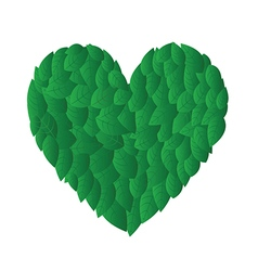 Heart from leafs vector image