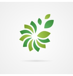 Logo combination of a flower and leaf vector image