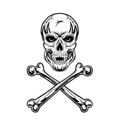 skull 0001 vector image