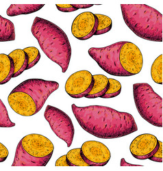 sweet potato seamless pattern drawing vector image