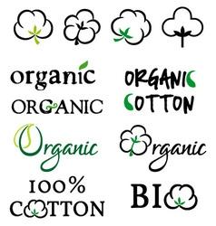 Organic cotton design elements vector image vector image