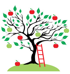 Apple tree ladder vector