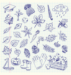 freehand drawing autumn items on a sheet vector image