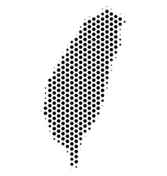 honeycomb taiwan island map vector image