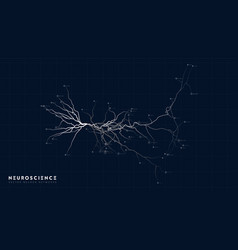 Neuron system model neural net structure vector