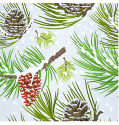 seamless texture christmas pine cones and snow vector image