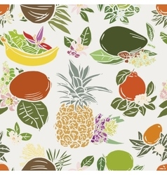 Various tropical fruits vector