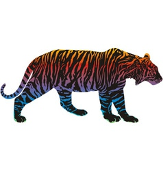 rainbow in the tiger vector image
