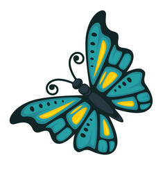 Butterfly with wings ornament vector