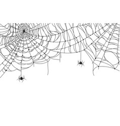 cobweb background scary spider web with spooky vector image