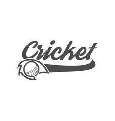 cricket club emblem and design elements team logo vector image