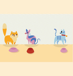 three different cartoon cats and bowls next to vector image vector image