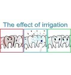 Effect of teeth irrigation vector