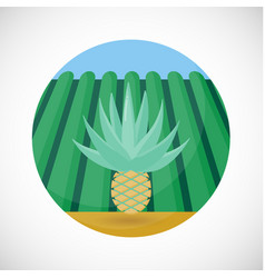 agave heart flat icon farm field background vector image