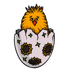 Cartoon image of chick easter symbol vector