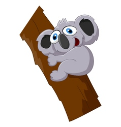 Cute koala cartoon on a tree vector