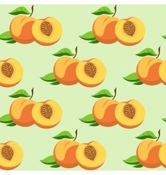 fruit and leaves of peach vector image
