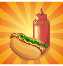 Ketchup and hot dog vector