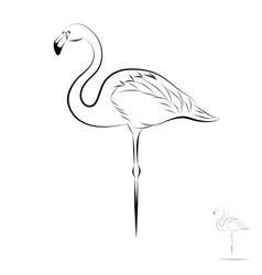 Stylized flamingo vector