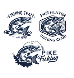 vintage pike fish logos fishing vector image