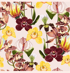 watercolor style yellow brown bordo orchid vector image