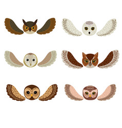 six owls faces with wings vector image