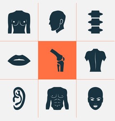 body icons set with listen body backbone and vector image