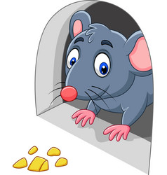 Cartoon mouse and cheese in the hole vector