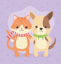 Cute and little dog with cat characters vector