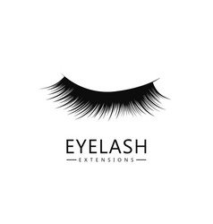 eyelash logo template eyelash extension concept vector image